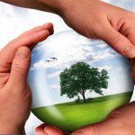 لزوم انتخاب مدیرانی کاردان برای حوزه محیط زیست