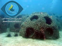آغاز ساخت زیستگاه های مصنوعی در آب های مرجانی کیش